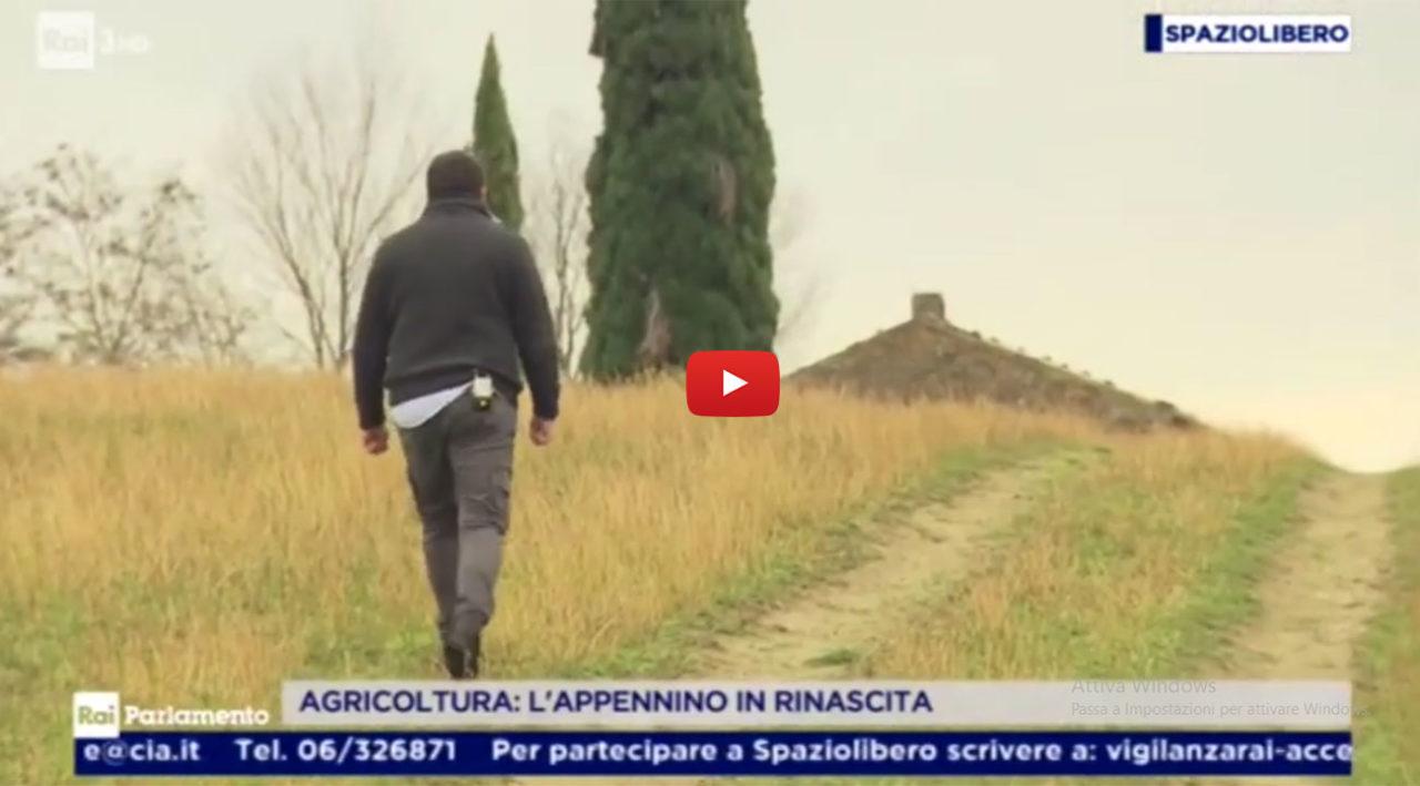 http://www.birrificiojester.it/wp-content/uploads/2019/01/Birrificio_Jester_Progetto_Cia_Prodotti_Appenninp-1280x709.jpg